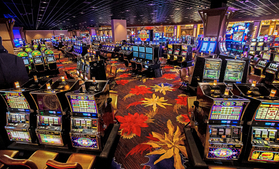 Casino For Newcomers and everybody Else